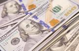 Иран готов сказать доллару решительное «нет»