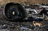 Австралийцы требуют c России за каждую жертву MH17 по $10 млн