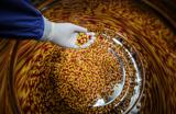 Скандал на рынке противораковых лекарств: США против Минздрава РФ