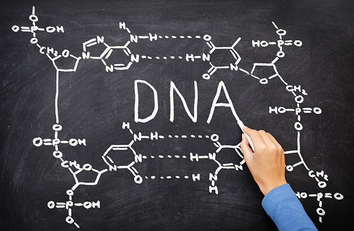 Можно ли вырезать «плохие гены» и существует ли наследственная предрасположенность к алкоголизму?