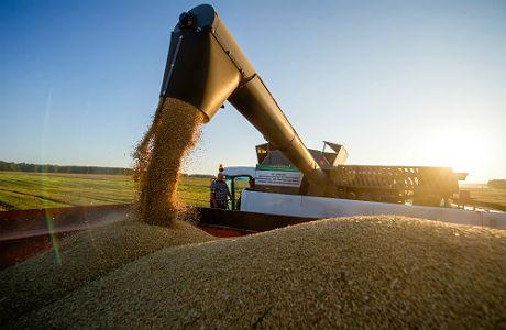 Пошлина на российское зерно: «Турция наказала сама себя»
