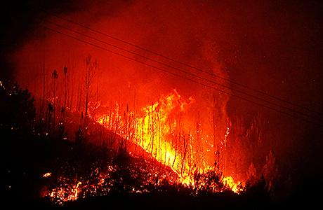 «Мы плакали и ждали смерти». Пожар в Португалии настиг десятки жертв прямо в машинах