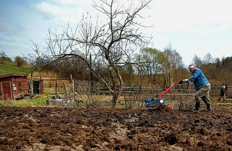 Дачникам, желающим строиться, грозят археологические раскопки — за свой счет