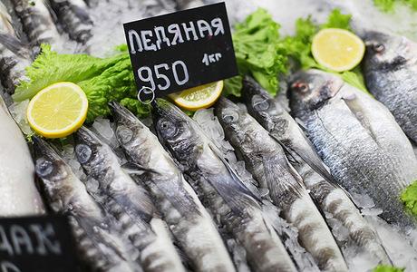 Почему «растаяла» ледяная рыба?