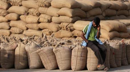 Российская пшеница портится, оказываясь в Египте. Фото: AFP