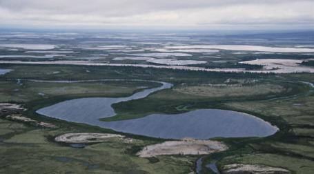 Газовые месторождения на Ямале. Фото: novatek.ru