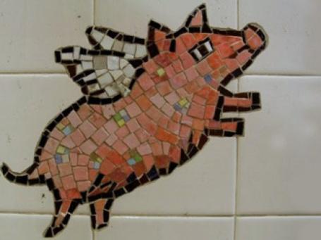 Свинофермы и мясокомбинаты