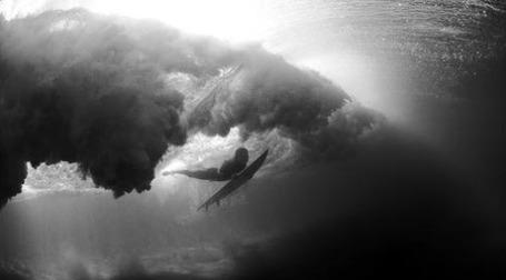 Серфингист ловит волну. Фото: Daniel Bos/flickr.com