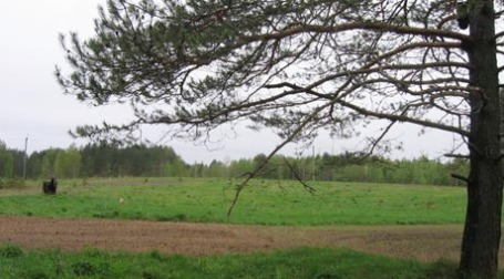 Земельный участок. Фото: toropets-land.ru