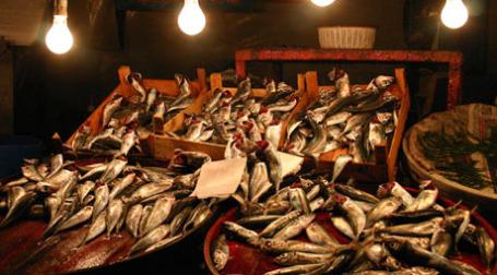 Рыба. Фото: svenwerk/flickr.com