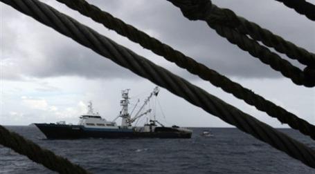 В последнее время пиратский бизнес активно развивается. Фото: AFP