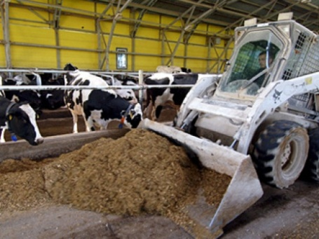 Проверка «Росагролизинга» показала, что поставленные задачи по поддержке сельского хозяйства не выполняются в полной мере. Фото: РИА Новости