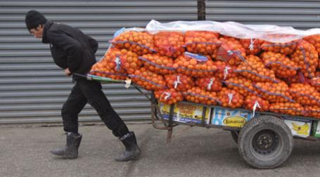Кроме манадаринов, в Россию из Абхазии вскоре могут повезти бананы и розы из Латинской Америки. Фото: РИА Новости