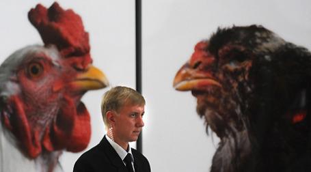 В Москве начинаются российско-американские консультации по вопросу соответствия российским требованиям курятины из США. Фото: РИА Новости