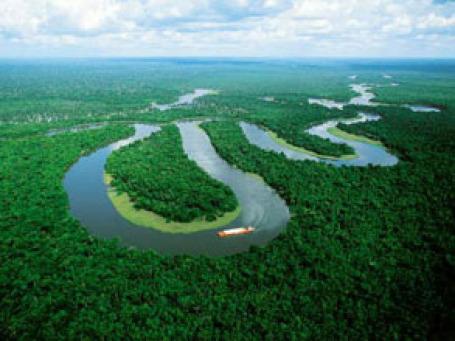 Вид на реку Амазонка. Фото: braziltravel.com