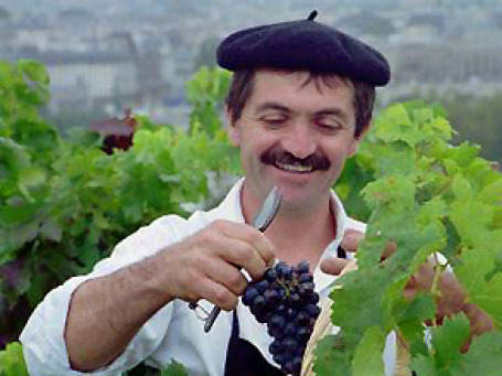 Французских виноделов отлучают от вековых традиций. Фото: AP