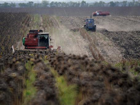 Засушливая погода на волне высоких цен на зерно и сахарную свеклу будет способствовать росту прибыли эмитента. Фото: РИА Новости