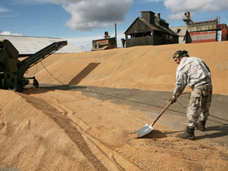Несмотря на обещания Минсельхоза, экспорт зерна из России начал иссякать. Фото: РИА Новости
