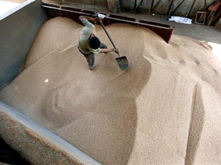 Москва просит у Казахстана от 100-300 тыс тонн зерна. Примеру столичных властей может последовать и правительство РФ. Фото: АР