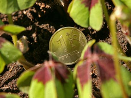 Минэкономразвития понизило прогноз по укреплению рубля к доллару в 2010–2013 годах. Фото: Григорий Собченко/BFM.ru