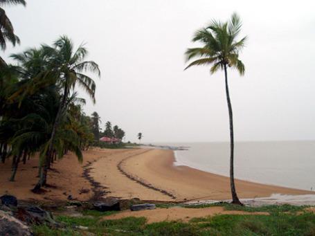 Один из немногих пляжей в Гайане, пригодных для купания. Обычно они покрыты толстым слоем ила. Фото: rustinpc/flickr.com