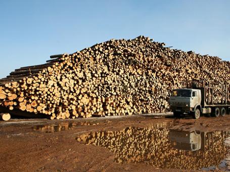 Экспорт древесины и целлюлозно-бумажных изделий из России за первые 9 месяцев 2010 года вырос на 18,5% до 6,357 млрд долларов. Фото: РИА Новости