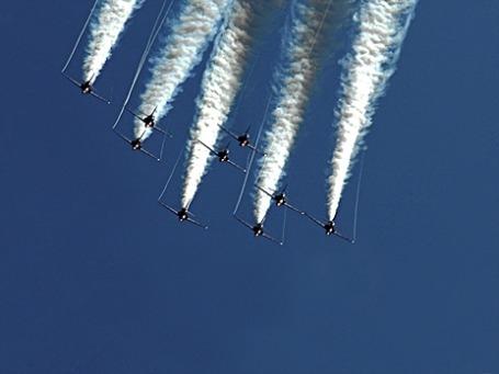 Фото: conespider/flickr.com