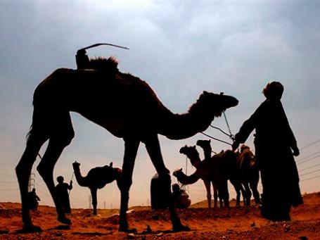Побережье Красного моря, некогда — вотчина бедуинских племен, теперь застроено гостиницами и курортами. Фото: AP