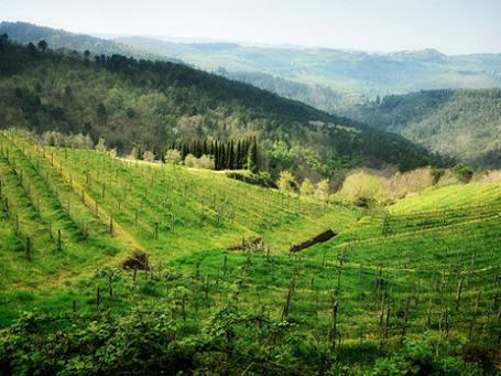 Для поездки в Италию на день рождения губернатора волгоградская делегация избрала Тоскану, одну из самых красивых областей. Фото: Photo Solo Jam/flickr.com