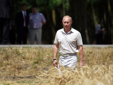 Президент Владимир Путин: «Должно быть четкое понимание того, где и что можно строить, какие есть ограничения по использованию того или иного участка». Фото: РИА Новости