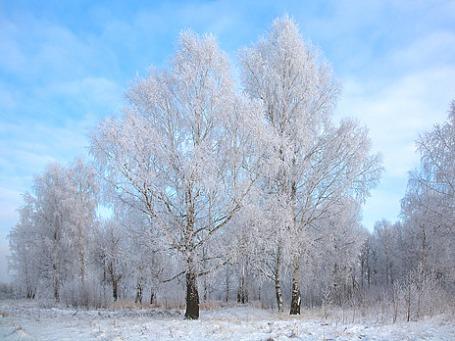 Фото: Anatoly Kraynikov/flickr.com