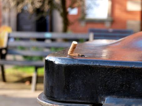 Фото: Samantha Sekula/flicr.com