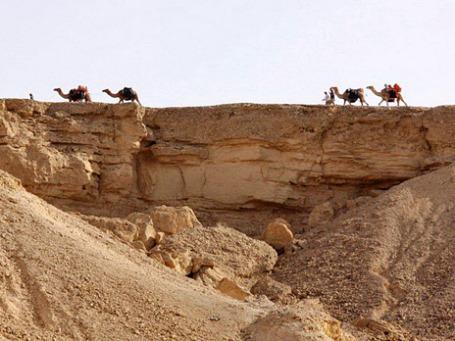 Пустыня Арава. Фото: rjc.ru