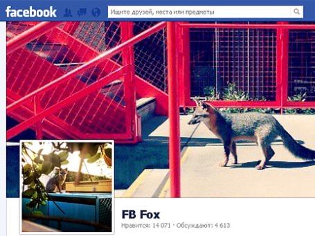 Фото экрана сайта facebook.com