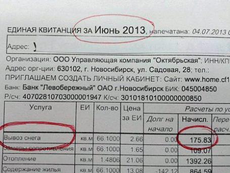 Фото: Елена Иванова/facebook.com