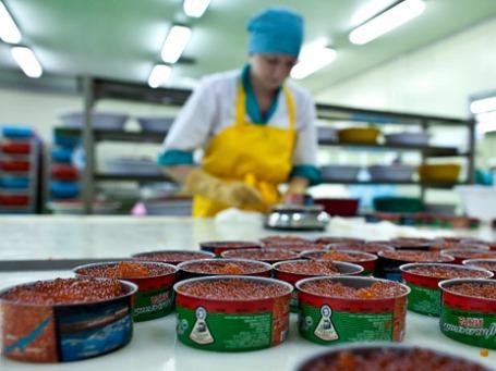Сотрудница рыбоперерабатывающего завода взвешивает расфасованную в консервные банки икру перед закаткой. Фото: РИА Новости