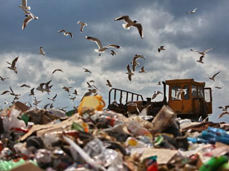 Полигон твердых бытовых отходов у деревни Заволенье Орехово-Зуевского района Московской области. Фото: РИА Новости