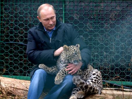 4 февраля 2014. Президент России Владимир Путин во время посещения Центра разведения и реабилитации переднеазиатского леопарда, расположенного в Сочинском национальном парке. Фото: РИА Новости