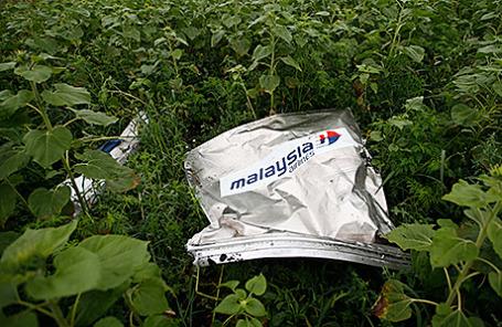 На месте падения самолета Boeing «Малайзийских авиалиний» в Донецкой области.
