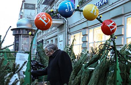 Житель столицы выбирает ель на елочном базаре.