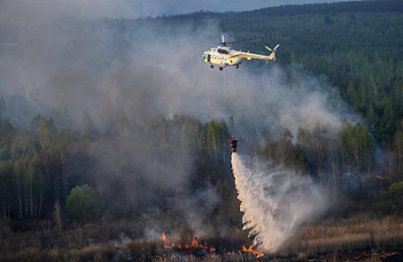 Лесной пожар в зоне отчуждения Чернобыльской АЭС.