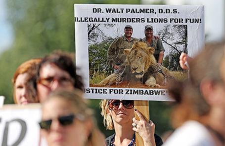 У офиса Уолтера Палмера из Миннесоты прошла акция протеста с требованием его экстрадиции в Зимбабве, где было застрелено редкое животное.