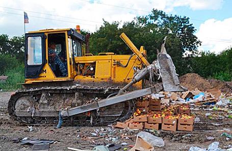 Уничтожение санкционных продуктов питания на полигоне Новосибирской области.