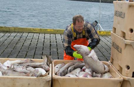 Исландский рыбак.