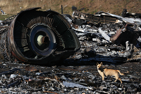 Обломки пассажирского самолета Boeing 777, разбившегося 17 июля в районе села Грабово.