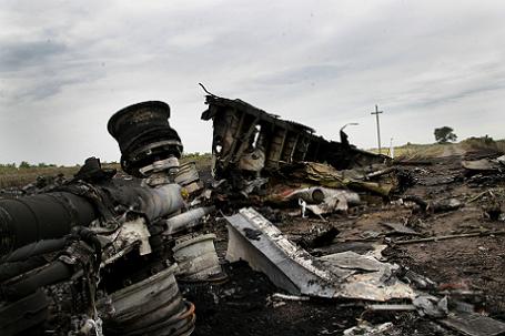 На месте крушения самолета Boeing-777 в Донецкой области.