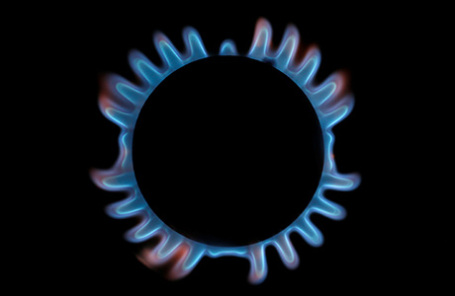 ВВарнеЕК обсудит поставки русского газа вЕвропу— Болгарский премьер