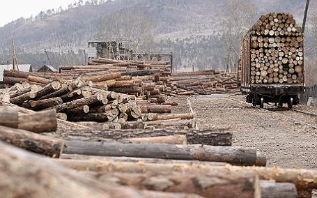 Рубка и вывоз леса в Читинской области.