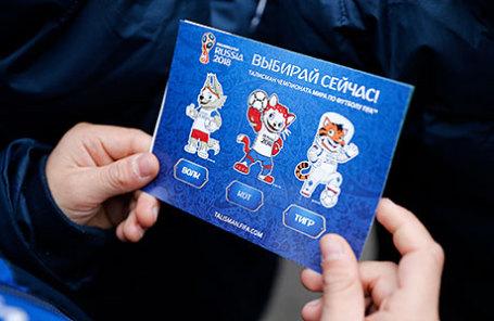Во время акции, посвященной выбору талисмана Чемпионата мира по футболу - 2018, в Калининградском зоопарке.
