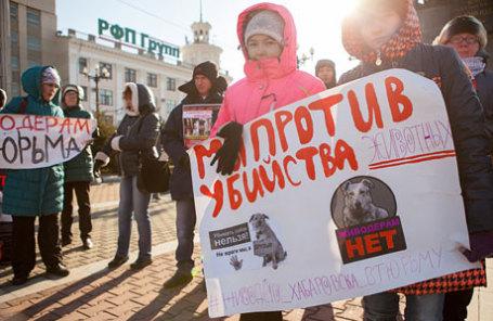 Участники пикета против жестокого обращения с животными, требующие ужесточить ответственность за издевательства над животными и их убийство.